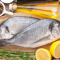 dubai fish depression