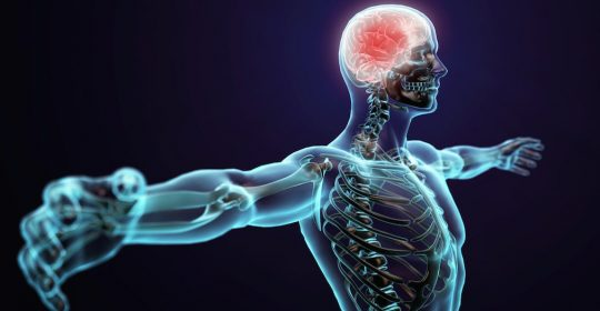Common Nervous System Disorders