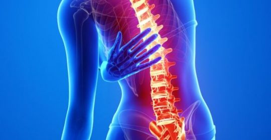 An Overview of Spinal Cord Disorders